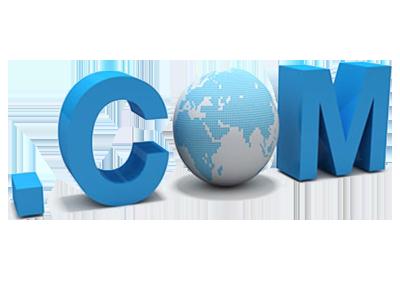 衡水域名注册, 衡水国际域名注册及 衡水国别域名注册服务